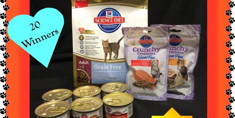 Hill's Science Diet Cat Food Gourmet Gift Baskets Giveaway