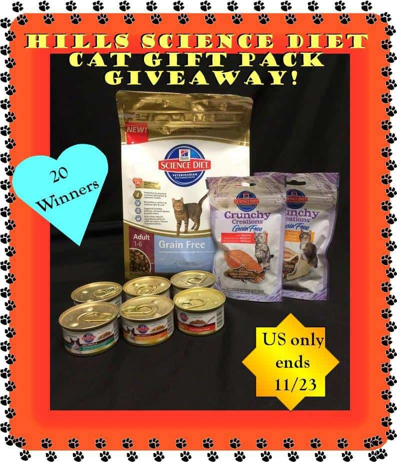 Hill's Science Diet Cat Food Gourmet Gift Baskets-Giveaway