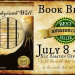 labyrinth wall book