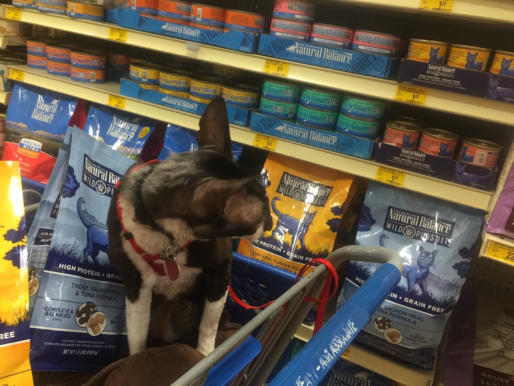 Wild-Pursuit-NaturalBalance-cat-food