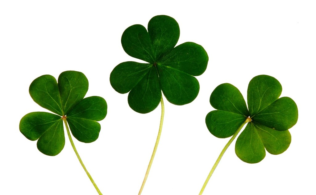 Good Fortune luck St Patricks green clover leaves