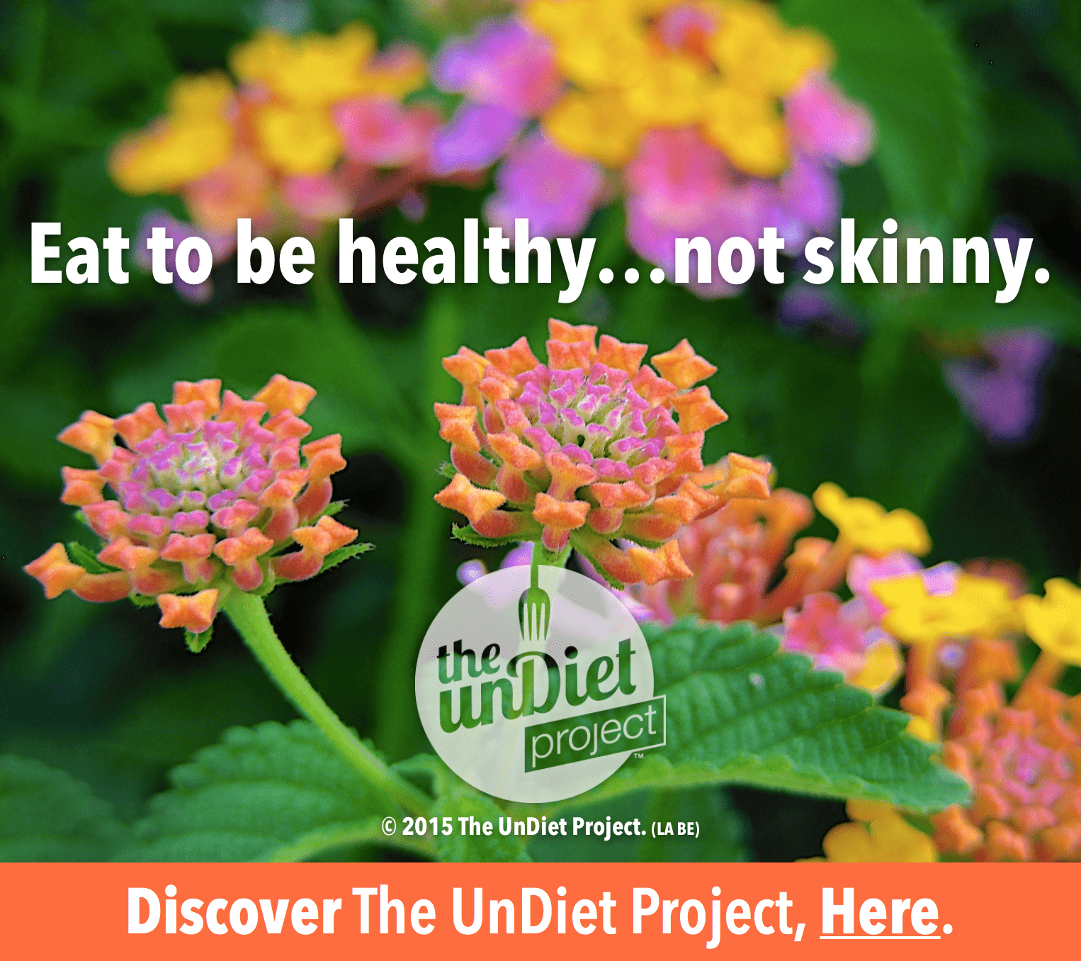 undiet project, weight loss, recipes, daily affirmations