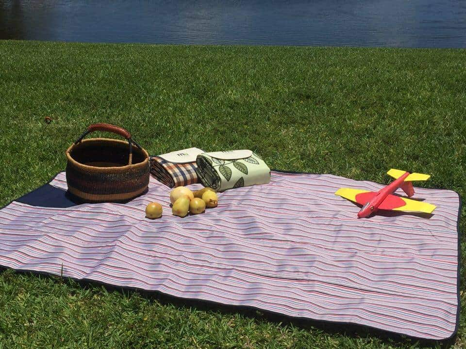picnic blanket, memorial day weekend, 4th of July picnic, miu color