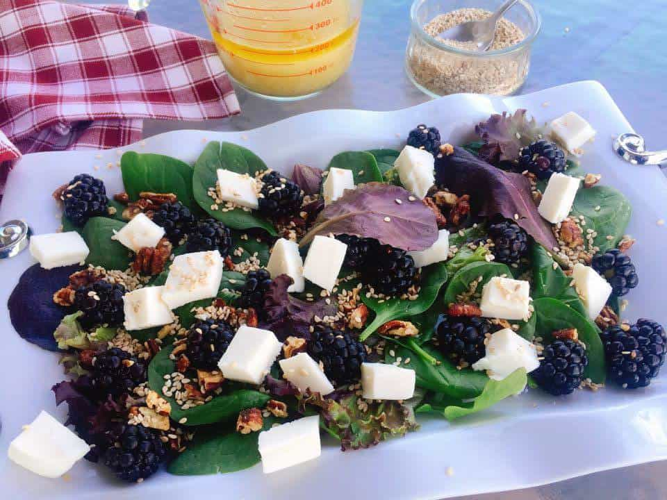 blackberry-mozzarella-spring-salad-recipe