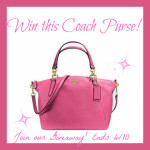 Who Would Like This PINK COACH PURSE?