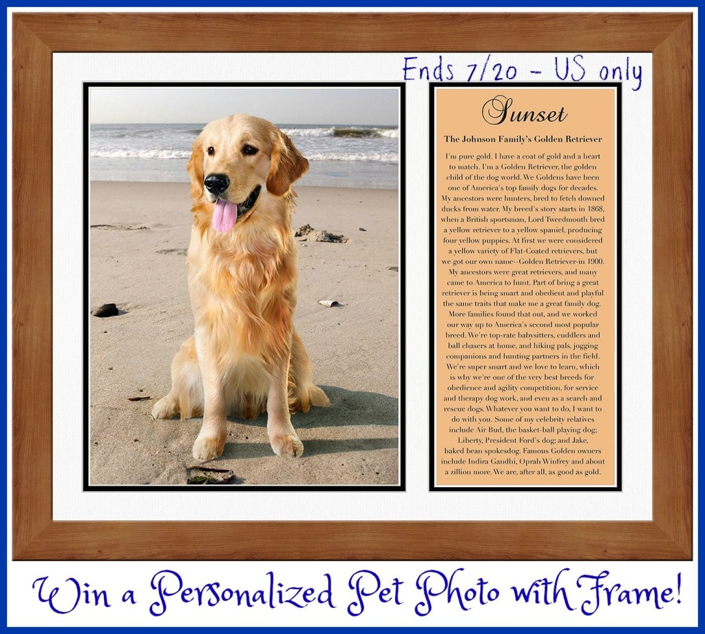 PERSONALIZED PET PHOTO