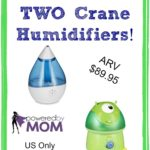 Add A Healthier Living Environment With Crane Humidifiers