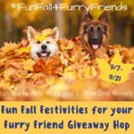 Pets Deserve Your Best Attention, Care And Paw Choice! #FunFall4FurryFriends