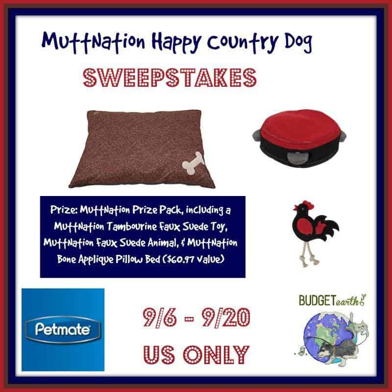 muttnation pet products, dog products