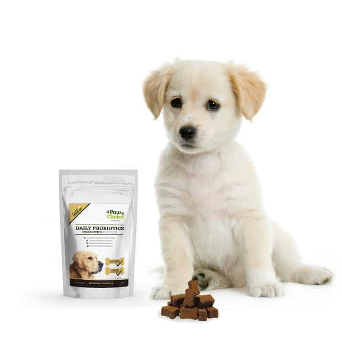 Paw Choice dog probiotics prebiotics