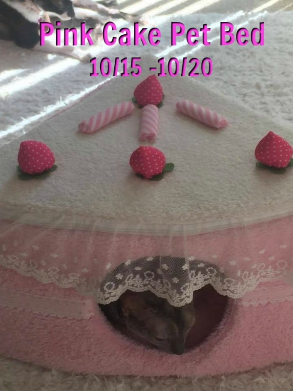 pink cake pet bed, best pet products