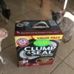CLUMP & SEAL™ Litter Helps To Keep Our Home Odor Free For Holidays #CLUMPandSEAL