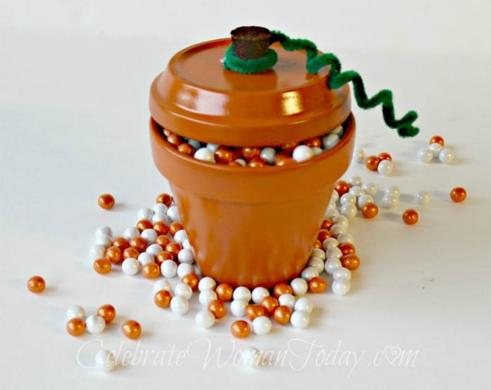 Terra Cotta Pumpkin Pot