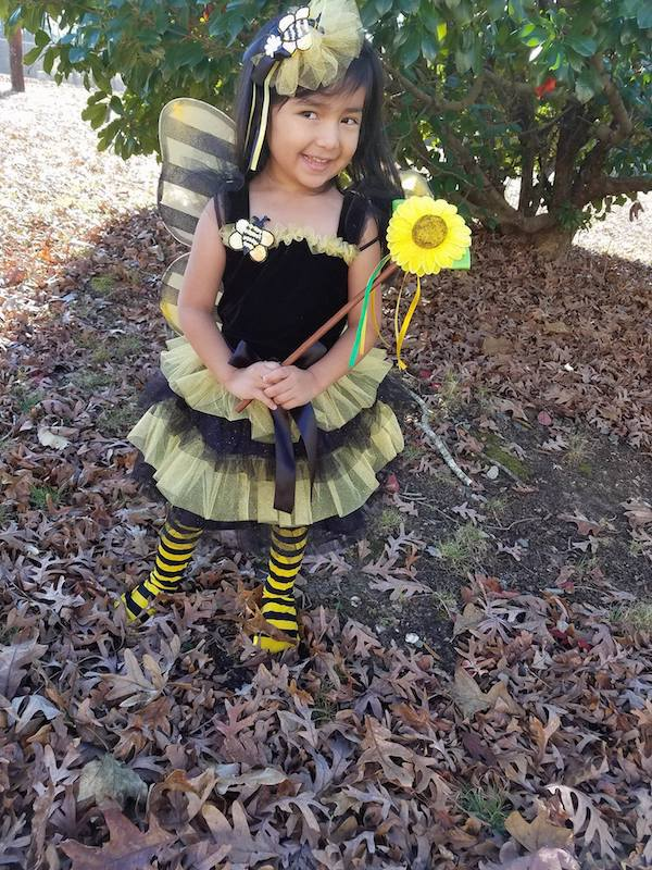 Just Pretend Kids Costumes Bumble Bee