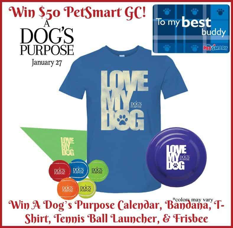 PetSmart Gift Card Giveaway