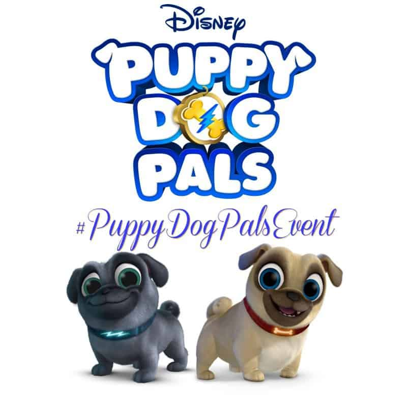 Puppy Dog Pals Disney Junior