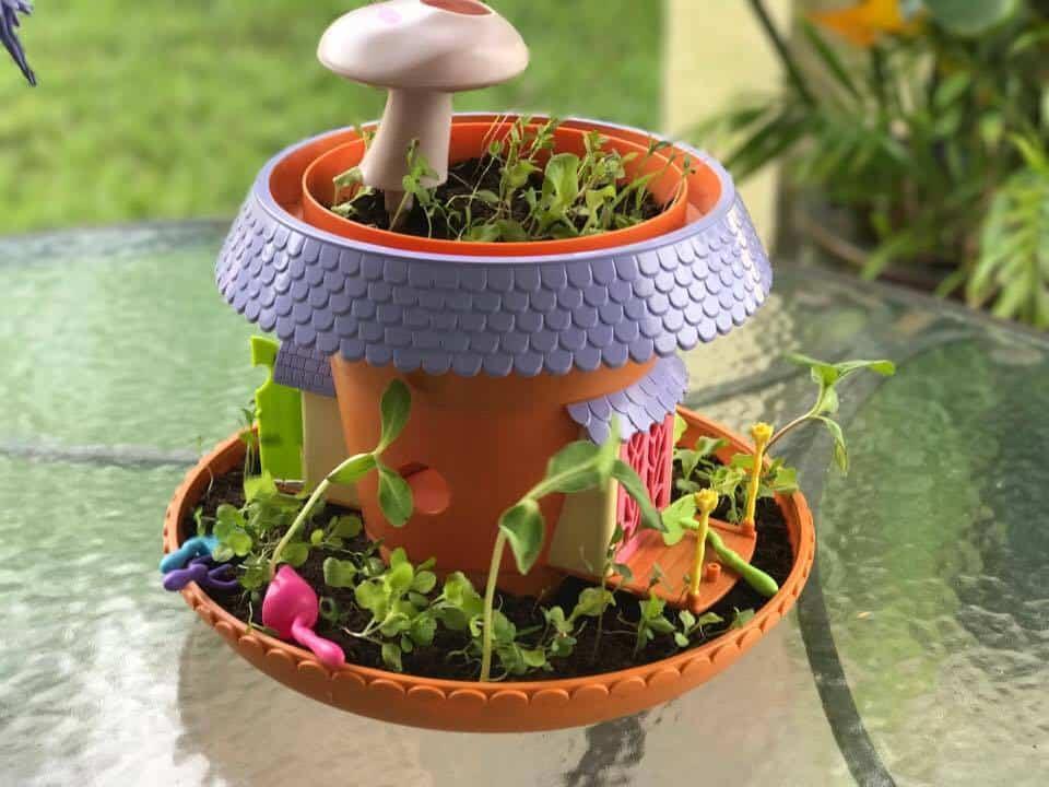 My Fairy Garden, Developmental Toys