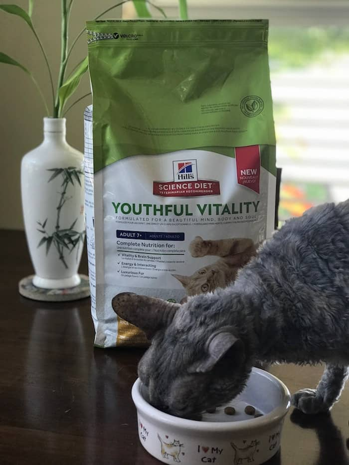 Hills Science Diet Youthful Vitality, Senior Pet Adoption Benefits