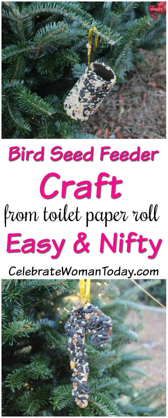 Bird Seed Feeder Craft