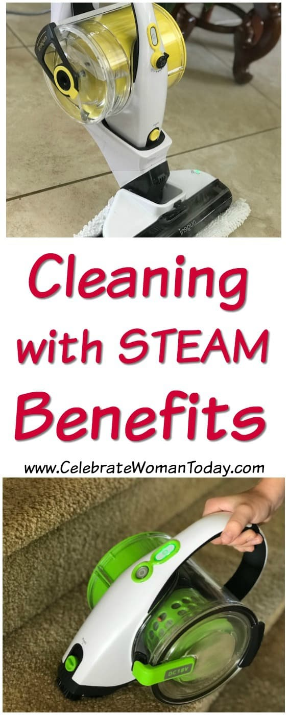 Chemical FREE Cleaning, nugeni vacuum and steamer system