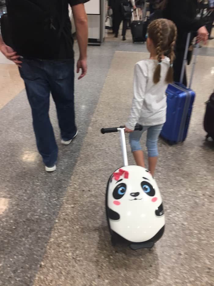 Zinc Flyte Scooter, Travel Scooter