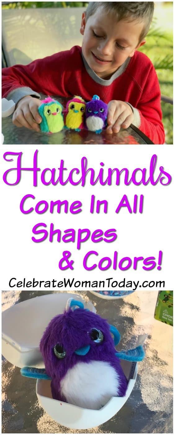 Hatchimals Surprise toys