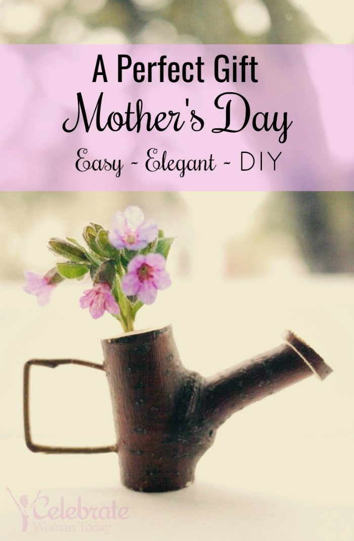 Easy twig craft for watering can you can easily make and gift to your mother, teacher, child. Adorable and affordable DIY project for Mother's Day.