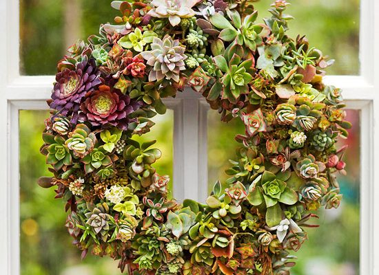 Designing Your Own Succulent Wreaths For Any Occasion ~ With Kathi Thomas
