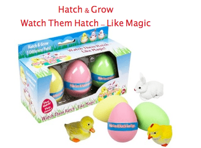 Hatching-Eggs-Easter