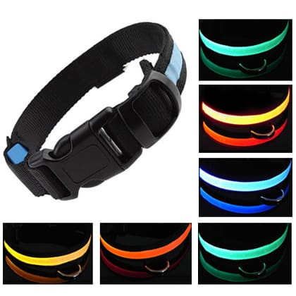 safe-glow-led-doggie-collar