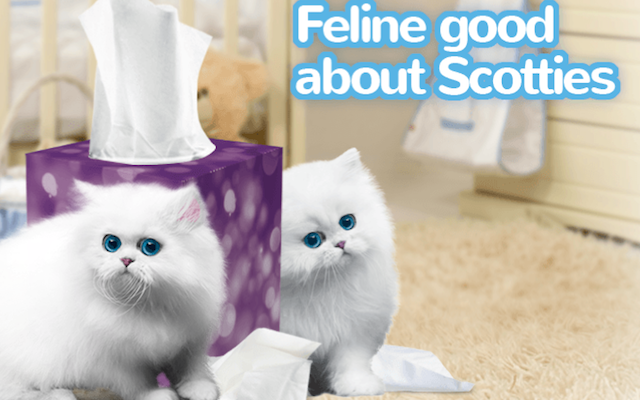 Get Your Kids Win 2015-2016 Scotties Facial Tissues 5th Annual TREES ROCK Video Contest