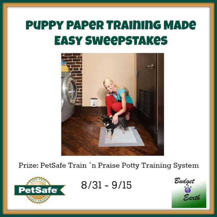 petsafe train n praise puppy training
