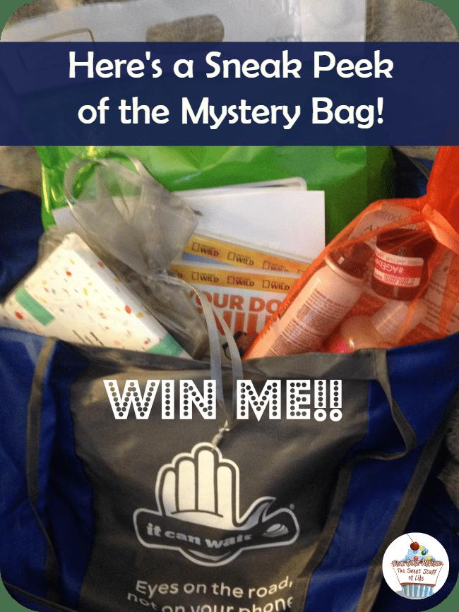 mystery swag bag
