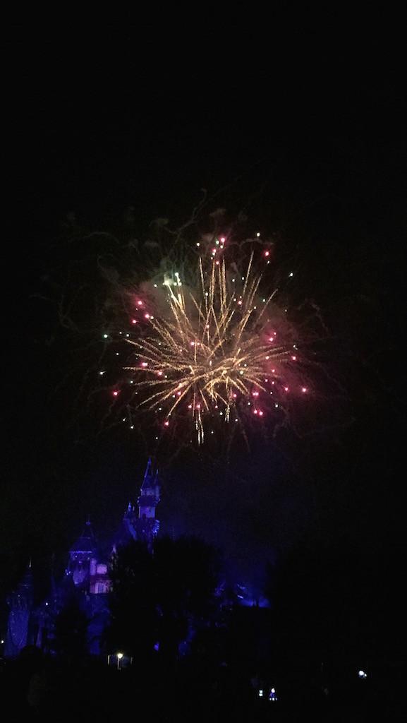 Fireworks Disneyland Forever