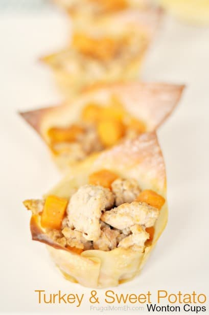 Turkey and Sweet Potato Wonton Cups