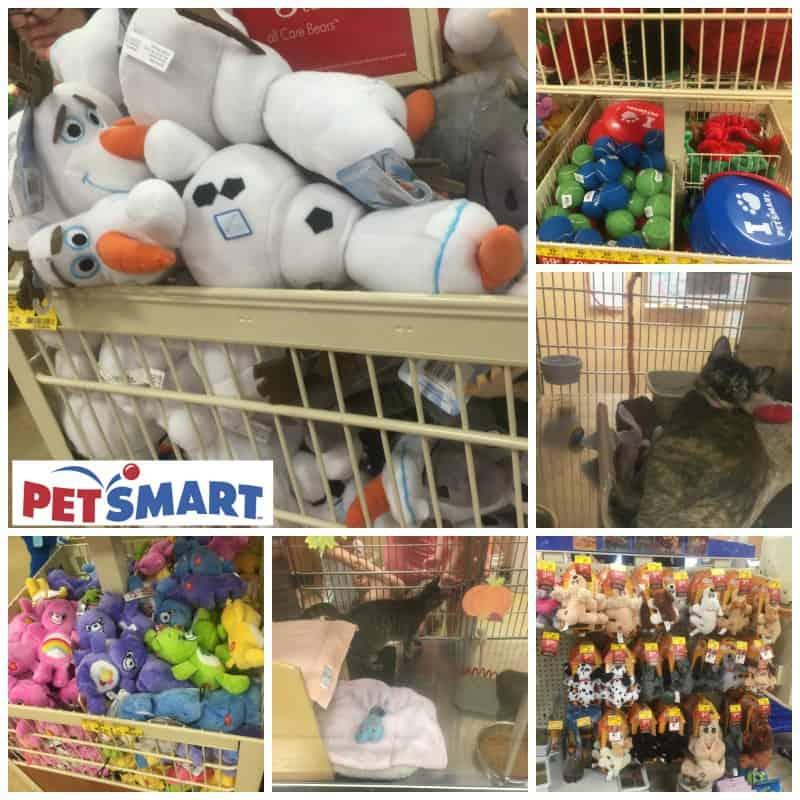 petsmart store holiday season