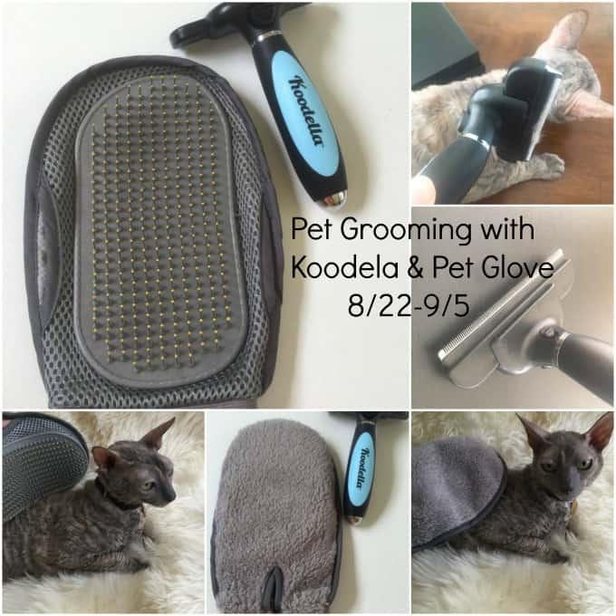 pet grooming, pet grooming tools, koodela