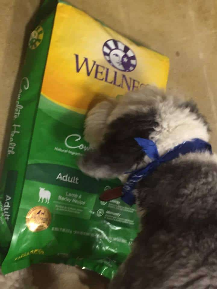WellPet Foundation, Wellness® Complete Health™ Dog Food and Snacks at PetSmart