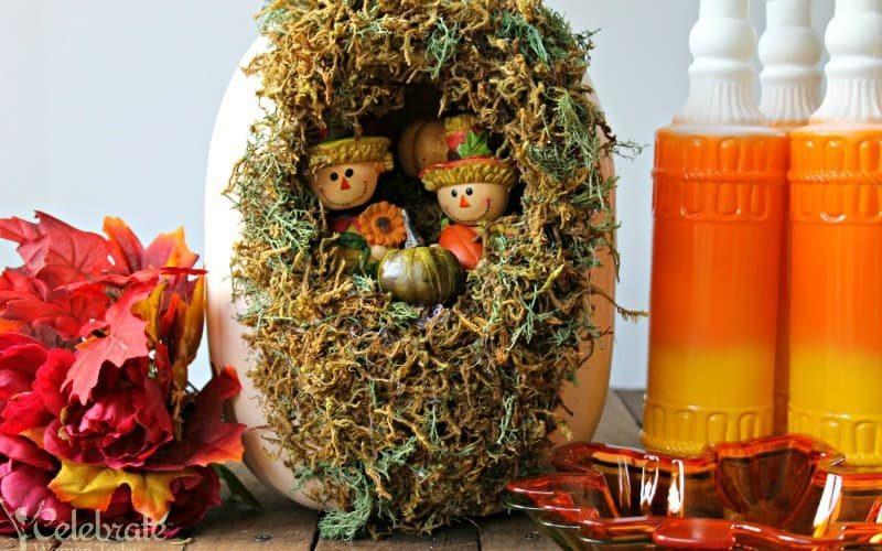 Halloween & Thanksgiving Pumpkin Garden