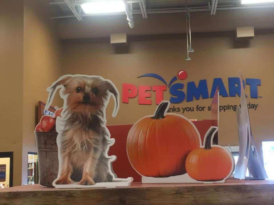 PetSmart Store Halloween