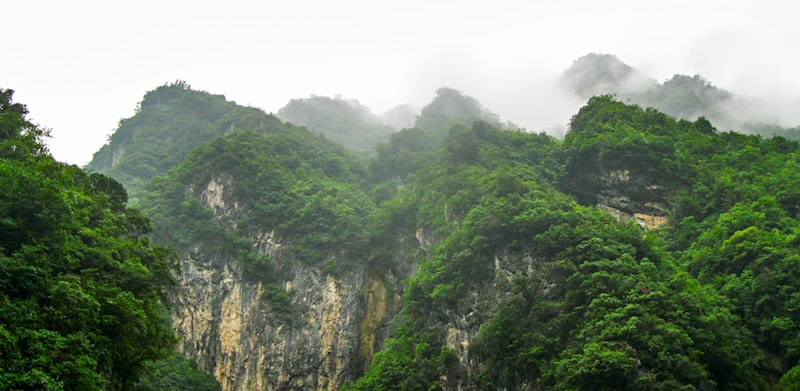 Wilderness view Born in China