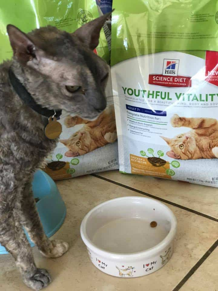 HILLS DIET Youthful Vitality Cat Food