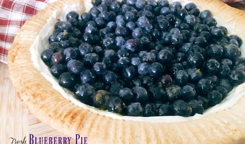 Best Fresh Blueberry Pie Recipe for A Healthy Holiday Dessert