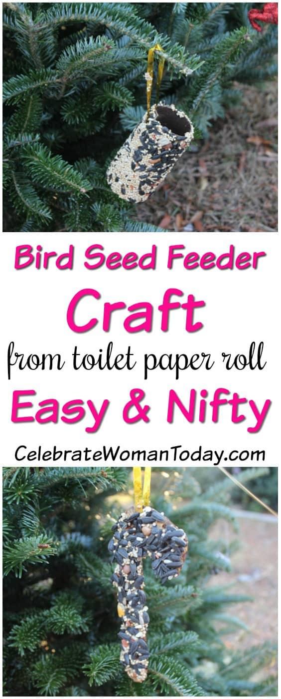 Bird Seed Feeder Craft