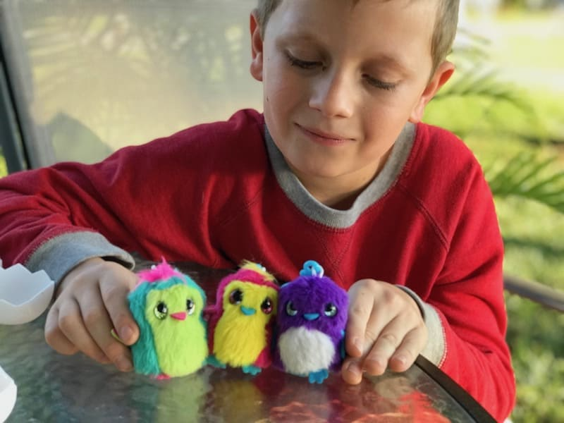 Hatchimals Surprise toys