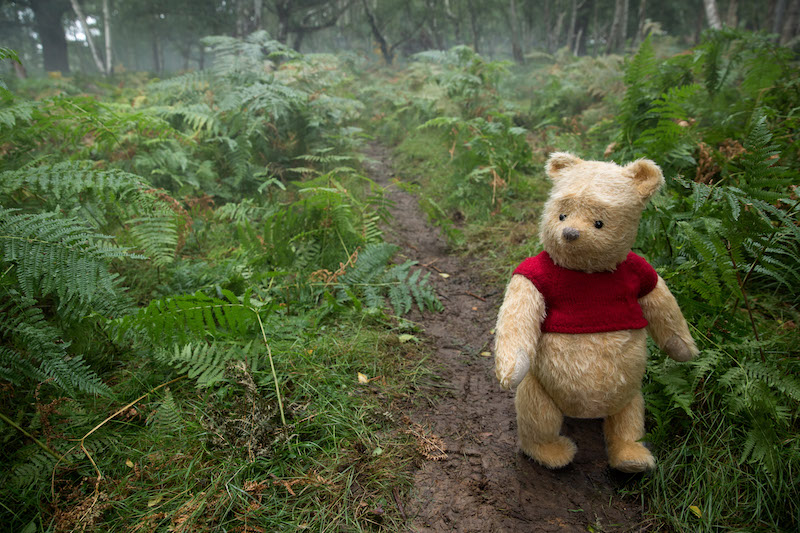 Winnie the Pooh is voiced by actor Jim Cummings in Disney's live-action adventure CHRISTOPHER ROBIN.