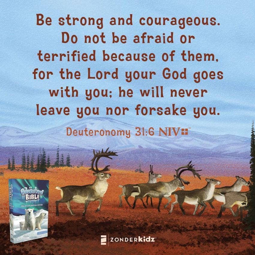 Take your child into a journey via Adventure Bible Polar Exploration Edition