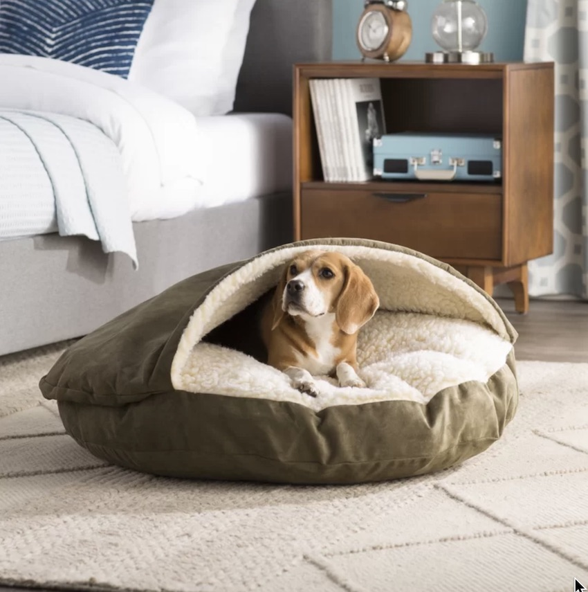 One of the Fun Solutions to make home more pet-friendly is to add dog and cat pet beds throughout your home.