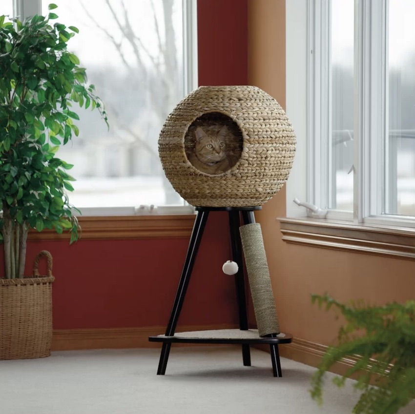Unique pet friendly furniture for cats! A sphere scratch post cat tree will bring hundreds of hours of entertainment to your kitty.