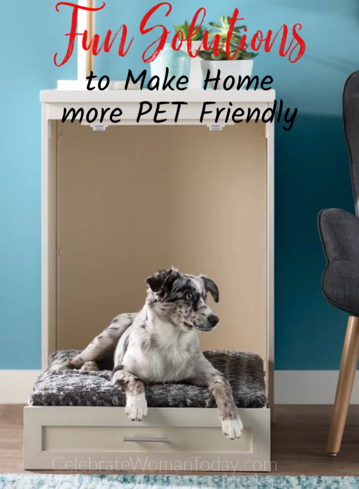 Fun Solutions To Make Home More Pet Friendly For Any Pet In Your Life
